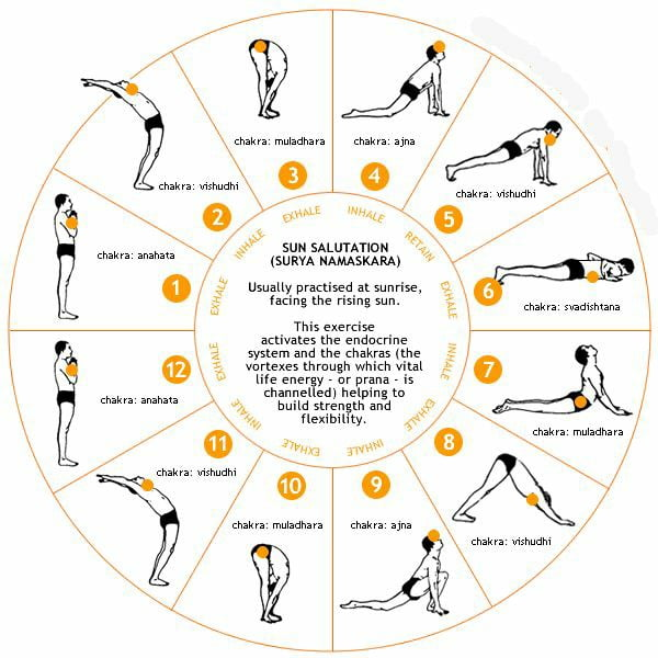 Surya Namaskar Rules and how to do it